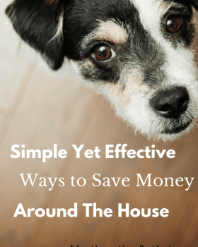 Simple Yet Effective Ways to Save Money Around The House
