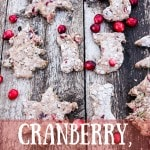 Cranberry, Lentil and Oat Christmas Dog Treats