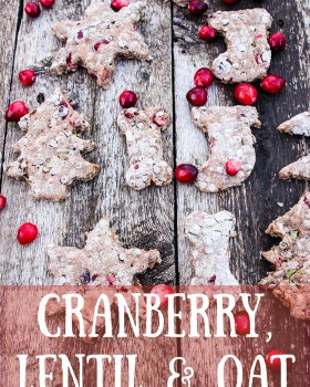 Cranberry, Lentil and Oat Christmas Dog Treats