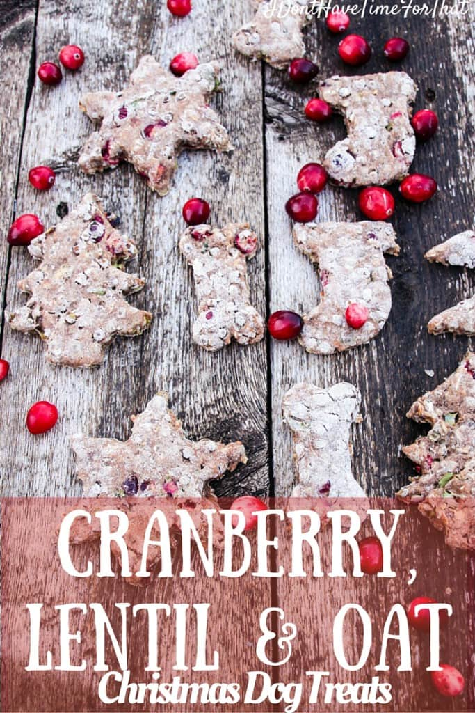 Cranberries, Lentils and Oats Christmas Dog Treats