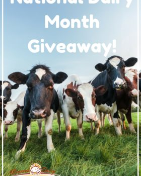 National Dairy Month Giveaway! ($50 Value)